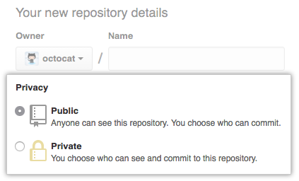 Public or private repository radio buttons