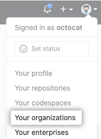 Your organizations in the profile menu